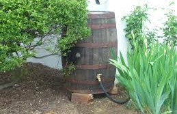 Reduce Stormwater